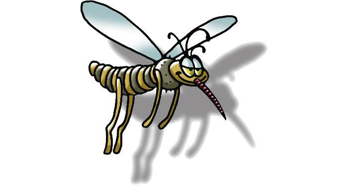 zanzare tigre