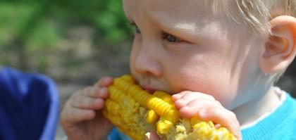 Undici mesi.. ..autonomia alimentare